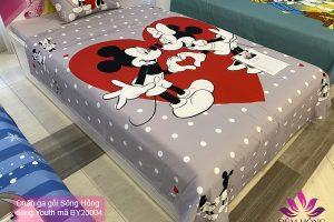 Chăn ga gối Walt Disney mã màu BY20004