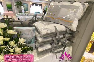 Ruột gối cao cấp Sông Hồng Premium Comfy