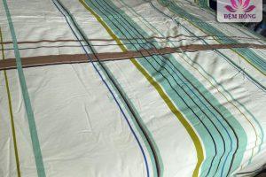 Vỏ chăn xuân thu Sông Hồng dòng 100% cotton