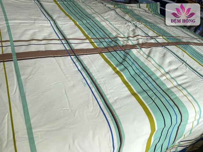 Vỏ chăn xuân thu Sông Hồng chính hãng 100% cotton mã C36